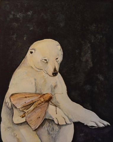 Jackie Morris, Bear and Moth, a Curious Love Story
