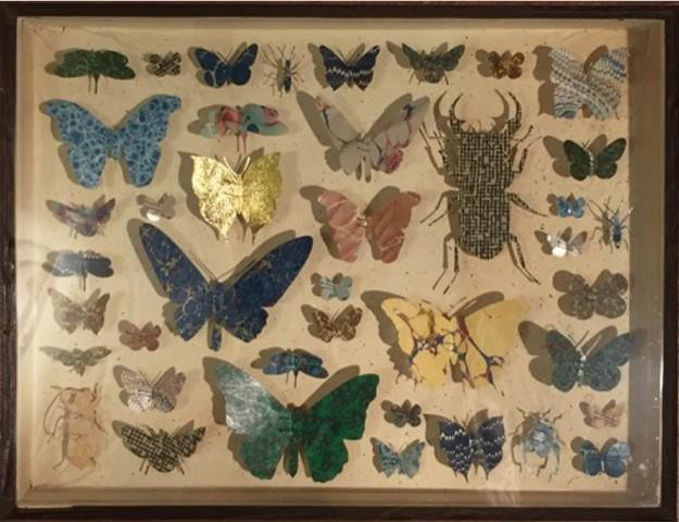 Helen Ward, Entomology Case 2