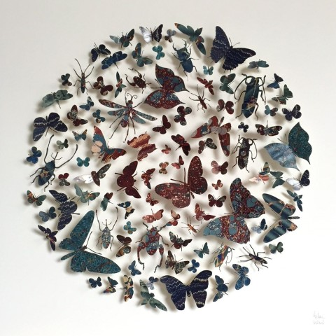 Helen Ward, Paper Wings 2, 2018