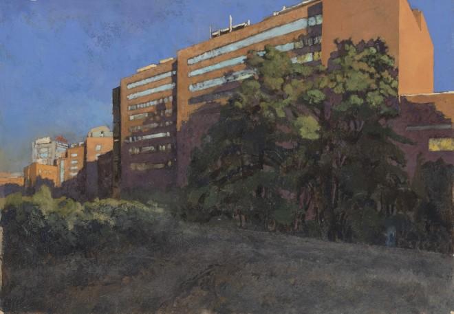 Charles-Élie Delprat, Madrid, hospital Jimenez Diaz, 2019