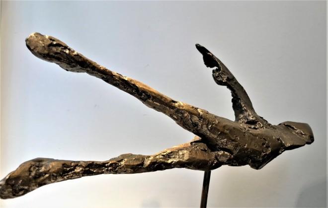 Horizontal Birdman 1