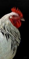 Charlie the Rooster II  Alexandra Klimas