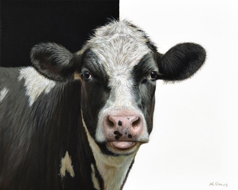 Daisy the Cow  Alexandra Klimas