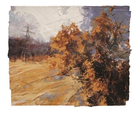 English Field Oak, Autumn  David Tress