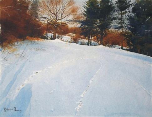 Fox Tracks  Richard Thorn