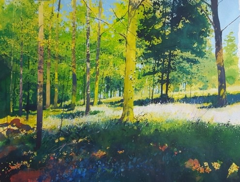 May in the Woods  Richard Thorn