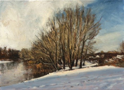 Snow on the banks of the River Waal