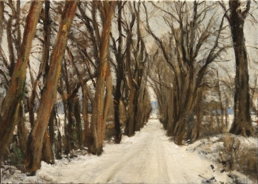 Snowy lane near Gestel