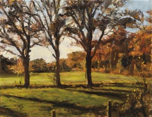 Trees at Wamberg