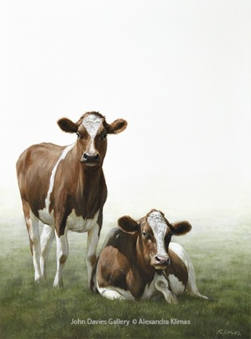 Fenny and Fouijke the Cows