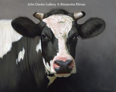 Tessa the Cow