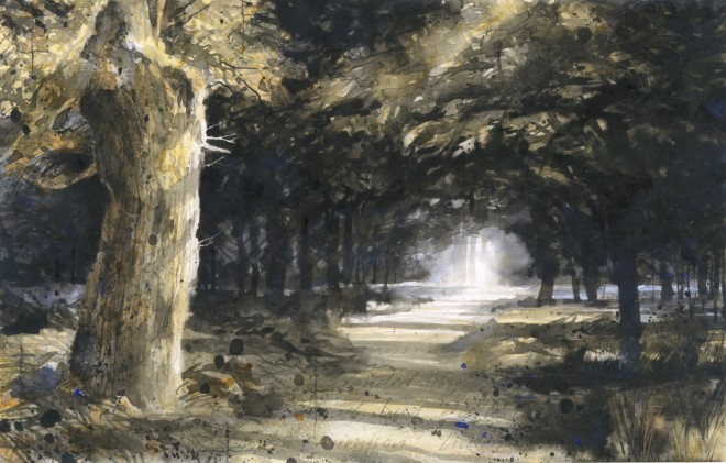 Gary Cook  Ancient Pathway