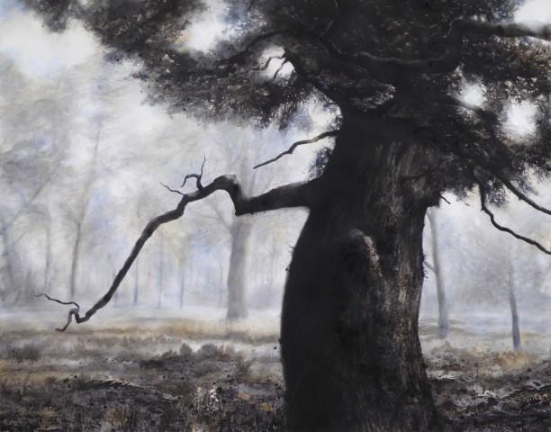 Gary Cook  Blenheim Oak