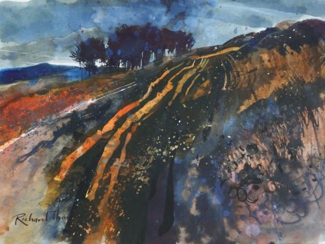 Richard Thorn  Moor Lines