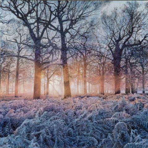 Mark S Payne  A Bright Start, Richmond Park  £4,250