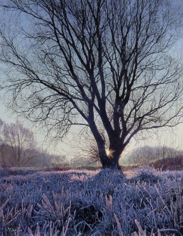 Mark S Payne  Dawn at Hinchingbrook Park  £4,250