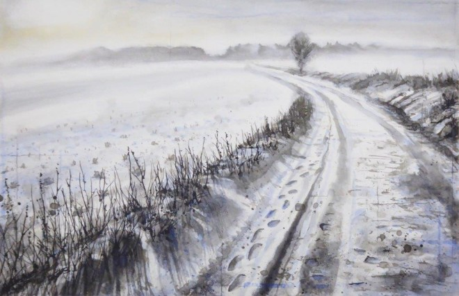 Frozen fields  Gary Cook