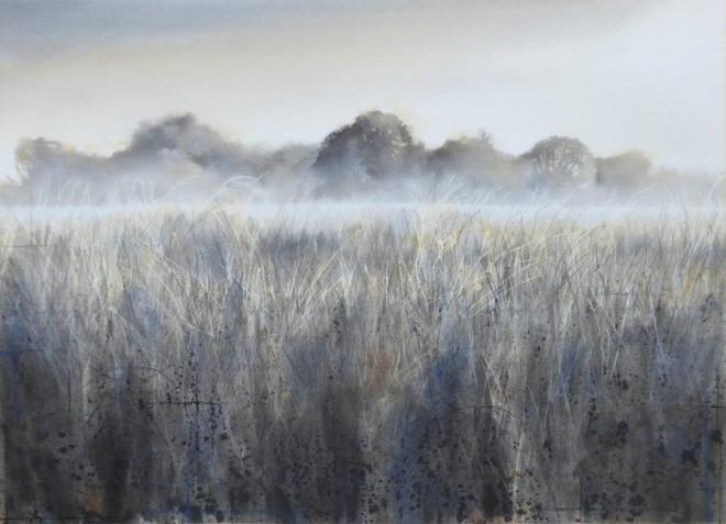 Oak in the water meadows  Gary Cook