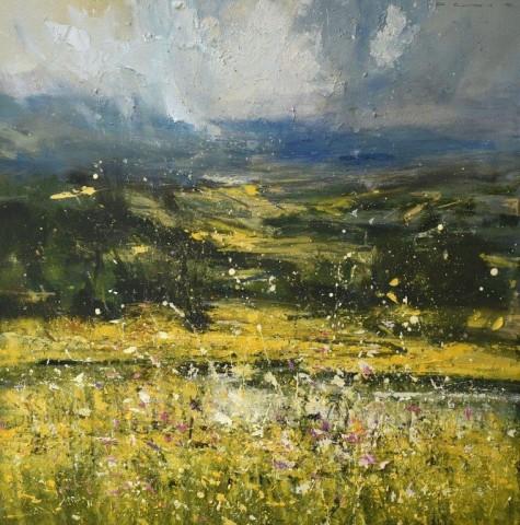 Desire (A lockdown landscape)  Chris Prout