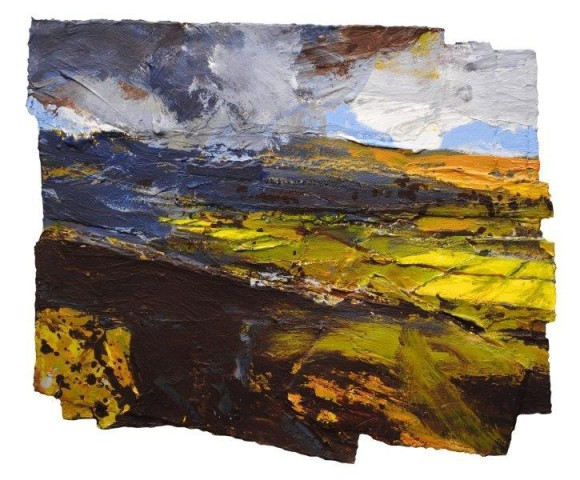 Buttercup Fields, Halton Gill, Yorkshire Dales  SOLD