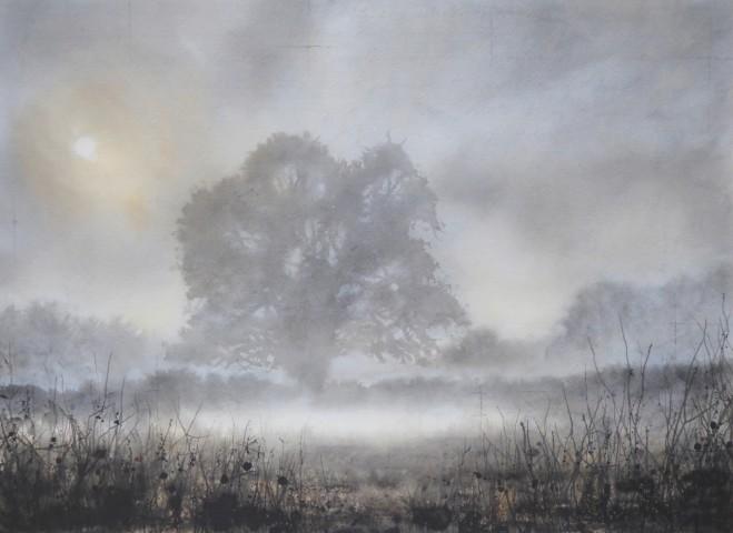 Gary Cook, Ground Cloud