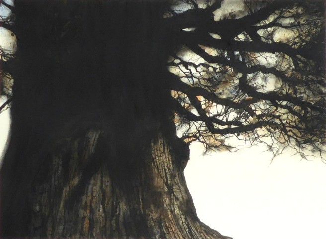 Gary Cook, Bourton-on-the-Water Oak No.2