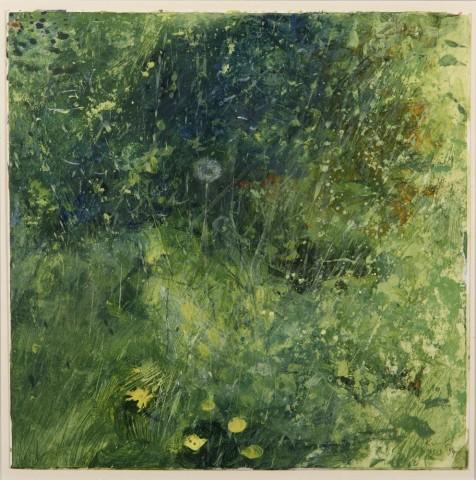 Kurt Jackson, Cornish dandelions 15.5.97
