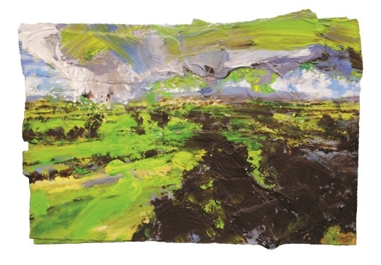 David Tress, Teesdale Green (Morning Sun, Shadow) I