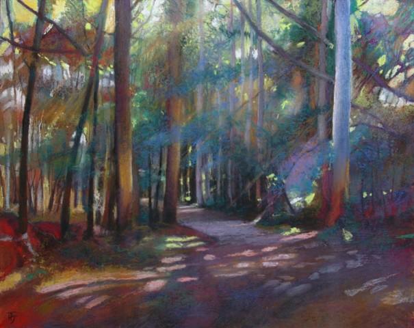Penelope Fulljames, Eucalyptus Forest