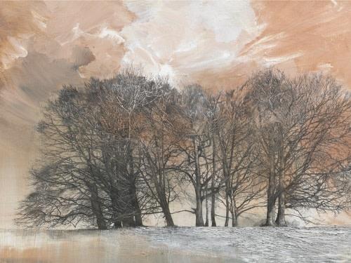 Mary Anne Aytoun-Ellis, Flooded Coronal - detail