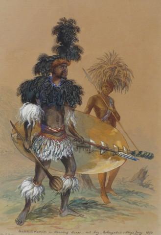 Thomas Baines, Matebele warrior in dancing dress