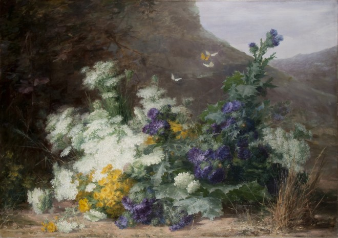 Wildflowers in a landscape