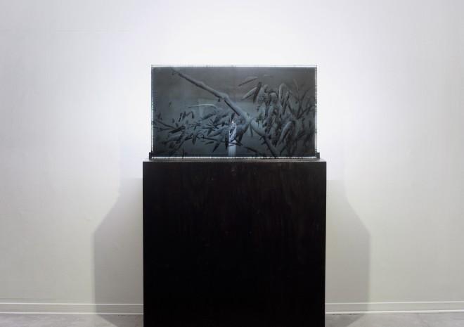 Transparent TV - Mukjukdo