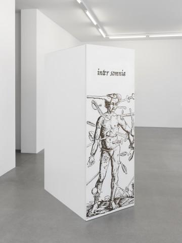 Jon Rafman, Dream Journal (Wound Man Closet), 2016