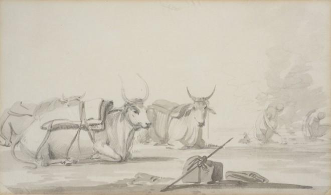 2. William Daniell R.A. (1769 - 1837), Bullocks , 1780-1790