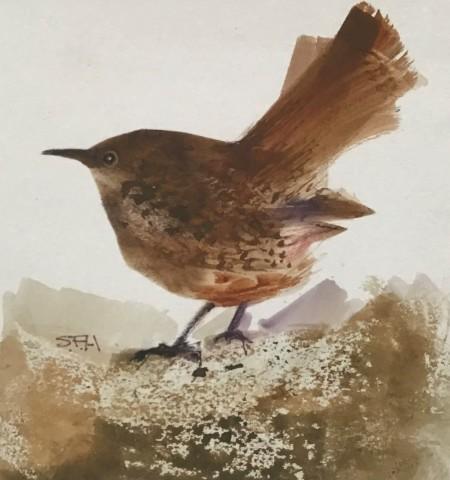 Sue Howells, Uccellino