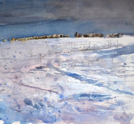 Richard Pikesley, Sheep Tracks in the Snow, Dorset