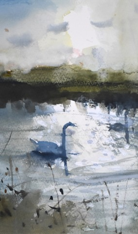 Richard Pikesley, Stour Swans, Winter