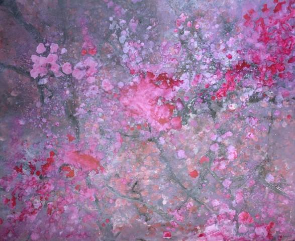 Robin Richmond, Cherry Blossom, Kyoto, Japan