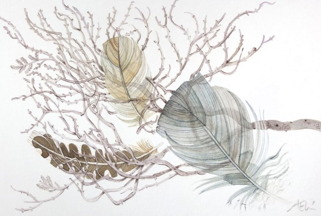 Angie Lewin, Spey Track Feathers