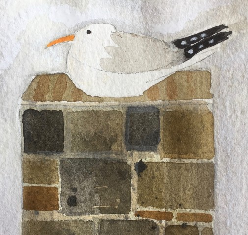 Jill Leman, Seagull in St Ives