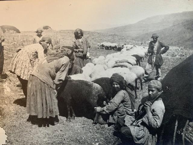 Antoin Sevruguin, Shepherds, Late 19th Century