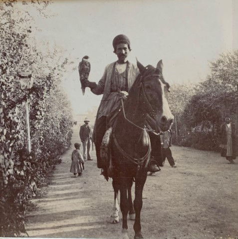 Not known, A Persian falconer on horseback, Late 19th Century, Early 20th Century