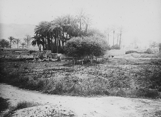 Not known, The village of Dalaki on the Persian Gulf, Late 19th or early 20th Century