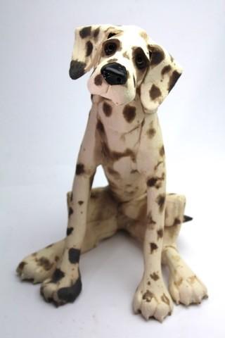 Virginia Dowe - Edwards, Large Spotty Dog