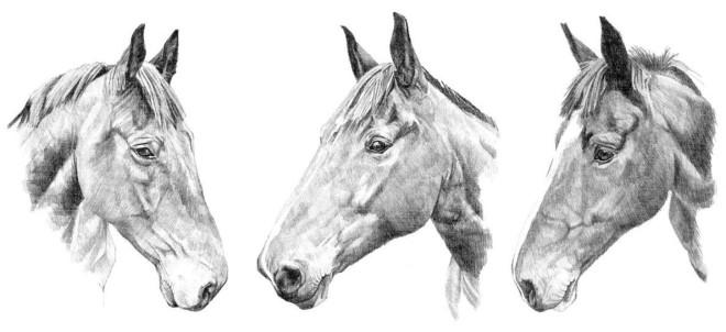 Drawings, 2008 - 2017