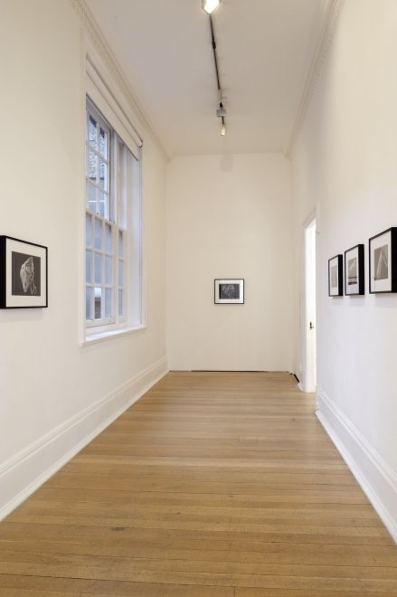 <p>Installation view, Thomas Dane Gallery</p>
