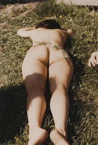 Untitled (Grass on Woman)