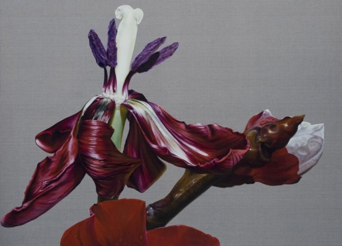 Anne Middleton, Red Tulip; the day of death, 2012