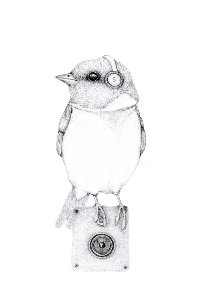 Jackie Case, Song Bird, 2014